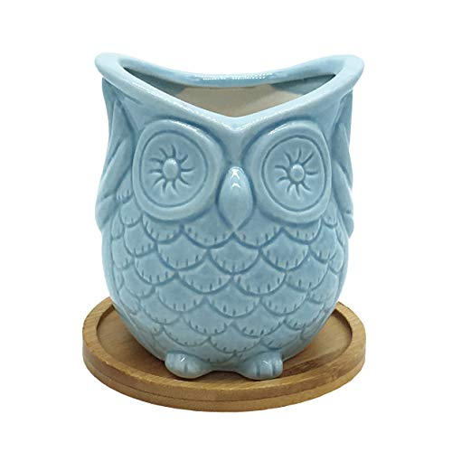 Gemseek Blue Ceramic Owl Succulent Planter Pot with Bamboo Drainage Tray Single Cute Animal Shaped Cactus Flower Container Bonsai Holder for Indoor Plants