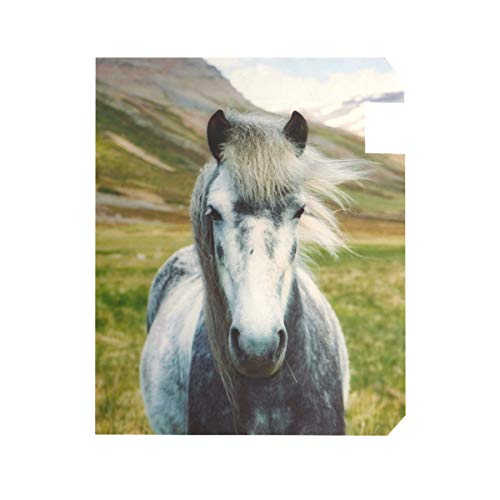 TaTaisu Mailbox Covers and Wraps Animal Horse Custom Magnetic Mail Box Cover Vinyl Home Garden Decor Standard Size