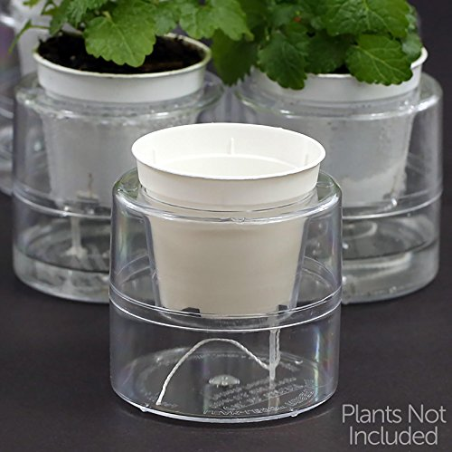 Miniature Self Watering Planter System - 18 Sets